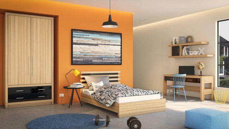 חדר דגם שחר